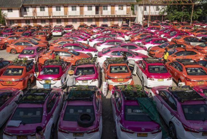 taxi - Na Tailândia, táxis parados por força da pandemia são agora hortas