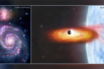 211026054337 nasa possible planet exlarge 169 360x240 - VIDA FORA DA TERRA?! Nasa pode ter descoberto o primeiro planeta em outra galáxia; 'exoplaneta' estaria a 28 milhões de anos-luz