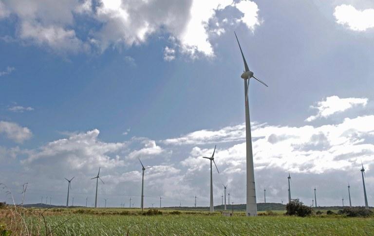 9e07dd76 babb 4694 8a43 4567f1cd5e76 - Paraíba se destaca na produção de energias renováveis e contribui para preservação ambiental