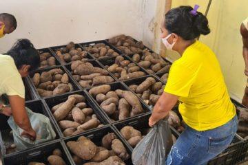 alimentos 2 360x240 - Prefeitura de Conde entrega mais de 12 toneladas de alimentos para famílias em situação de vulnerabilidade social
