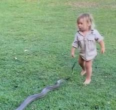 crianca 1 - ASSUSTADOR: bebê de dois anos puxa cobra pelo rabo para fora de casa - VEJA VÍDEO