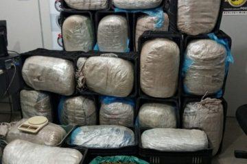 maconha 360x240 - Pai e filho são presos por suspeita de armazenar 200 kg de maconha em casa